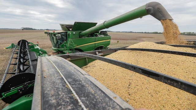 US farmers face challenges from Mother Nature, trade war