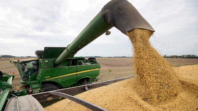 Midwest farmers feeling impact of rains and tariffs on spring planting
