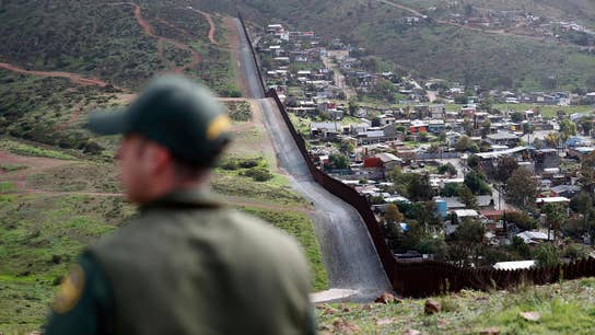 Mexico deploys 15K troops to US border: Report