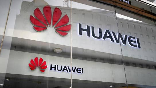 Huawei has no direct connection to Chinese government: Huawei vice president
