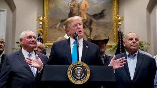Trump urges Democrats to pass the new NAFTA deal