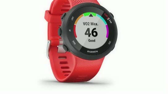 Garmin CEO on the growth of wearable devices