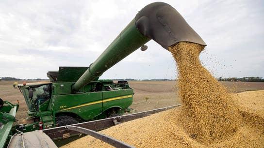 Iowa farmer on the US-China trade dispute