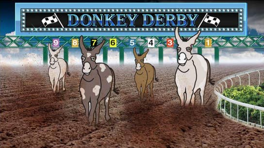 Donkey Derby: How well do you know your Democratic presidential candidates