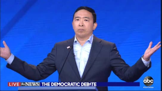 Yang campaign to give 'freedom dividend' of $1,000 a month for a year to 10 American families