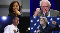 Democrats hit fossil fuel industry amid climate debate