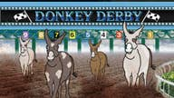 Learn about 2020 Dem candidates with 'Kennedy's' 'Donkey Derby'