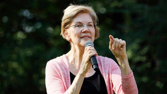 Are Sen. Warren's and Sen. Sanders' economic visions 'the same thing?'