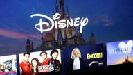 Thousands of Disney+ accounts hacked days after launch: Report