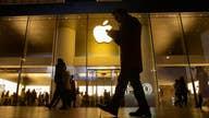White House pressuring Apple over gunman's locked phones