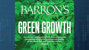 The rise and profitability of socially responsible investing