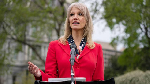 Trump is the best person to 'rejuice' the economy: Kellyanne Conway