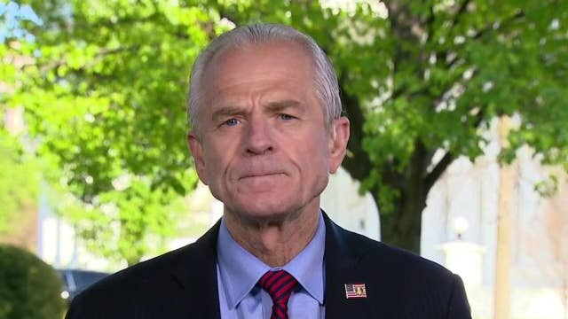 Peter Navarro: WHO has 'blood' on its hands