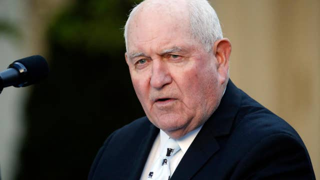 Sonny Perdue: US has 'plenty of food' to feed Americans