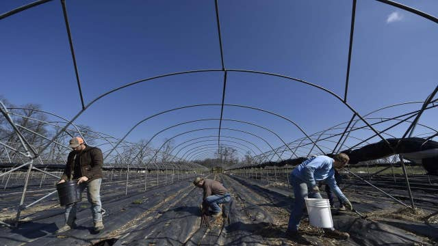 US food supply 'safe and sound': Agriculture secretary
