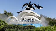 SeaWorld Interim CEO on coronavirus reopening: We'll benefit from majority of visitors driving to our parks