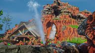Reimagining  Disney 'Splash Mountain' ride could take over a year: Former imagineer