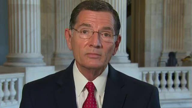 Wyoming senator on coronavirus reopenings: 'We're not turning back'