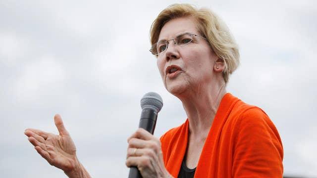 Bank execs worried Biden may appoint Warren as treasury secretary: Gasparino