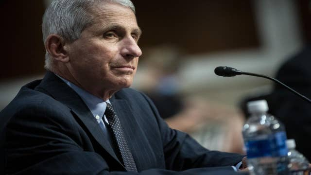 Fauci: US still 'knee deep' in first wave
