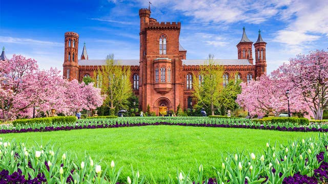 Smithsonian faces backlash after publishing aspects of 'whiteness'