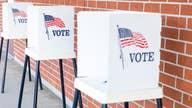Election will be decided on coronavirus response and economy: WSJ associate editor