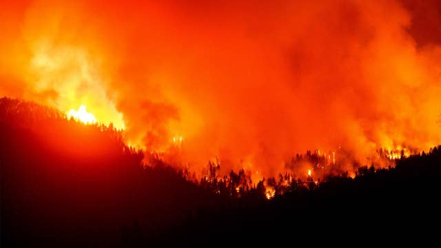 Fire suppression is bigger cause for wildfires than global warming: Environmentalist