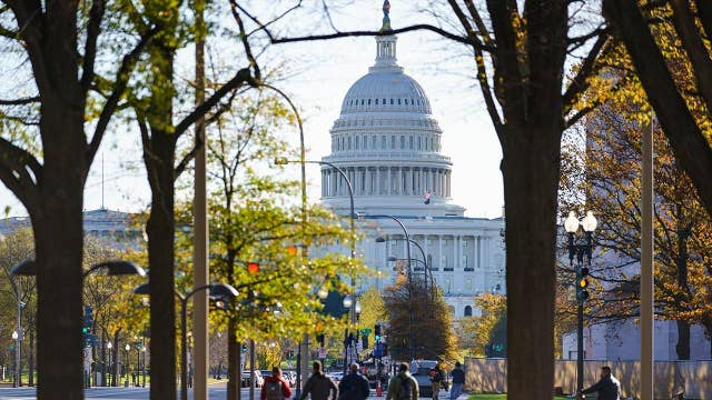 Congresswoman-elect to carry gun at Capitol