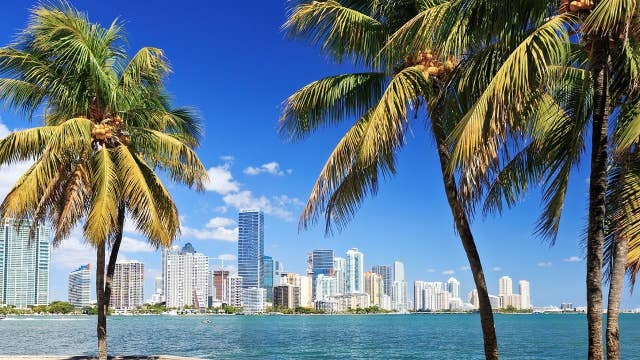 Celebrities lead the pack as more Americans are 'flocking' to Florida: Ex-'Apprentice' star