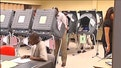 What is needed to reduce voter fraud?