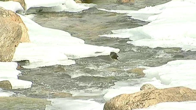 Concerns over Colorado decision to keep all its river water