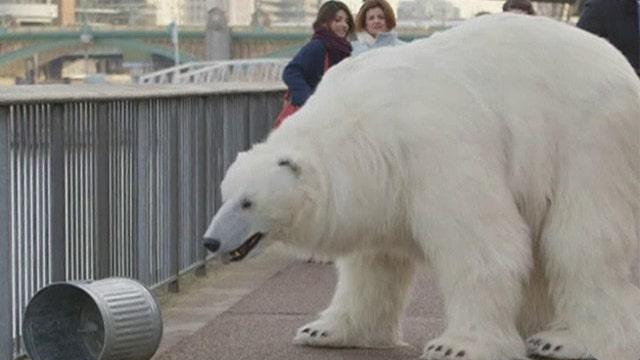 'Polar bear' shocks Londoners