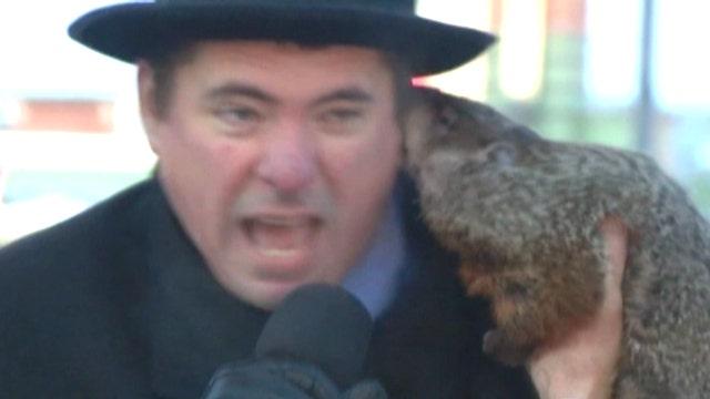 Jimmy the groundhog bites mayor in Wisconsin