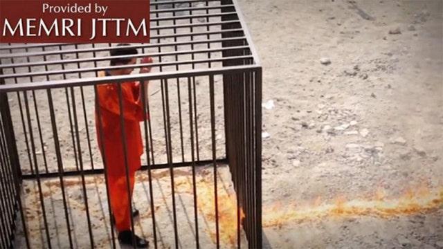 'Brutal' video purports to show Jordanian pilot burned alive