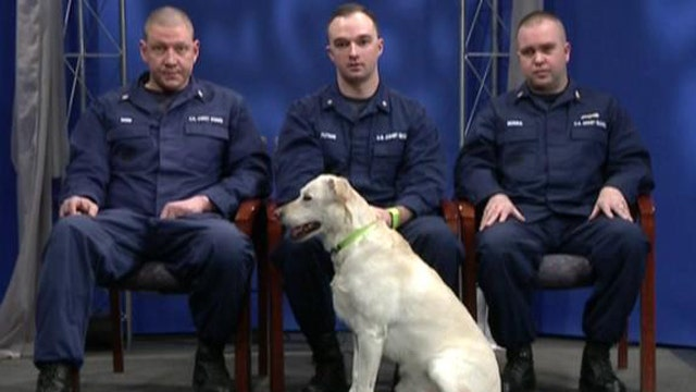 Coast Guard saves drowning dog from frozen river