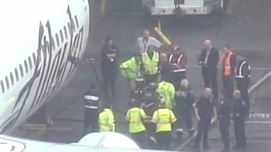 The airport worker fell asleep in the plane's cargo hold, awoke mid-flight