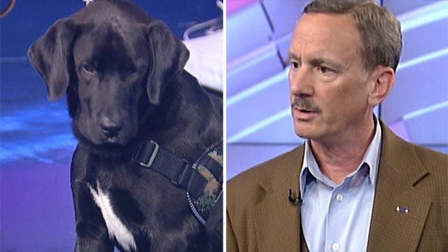Life is better together for veteran, shelter dog