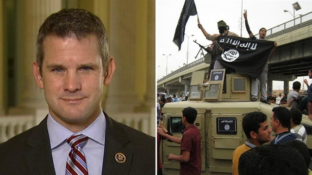 Rep. Kinzinger reacts to WH calling ISIS strategy a success