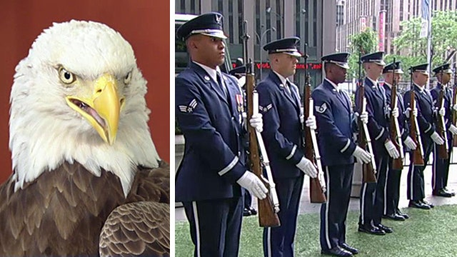 USAF Honor Guard, Challenger the Eagle honor our heroes