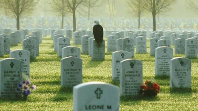 Photographer captures eagle perched on soldier's gravestone