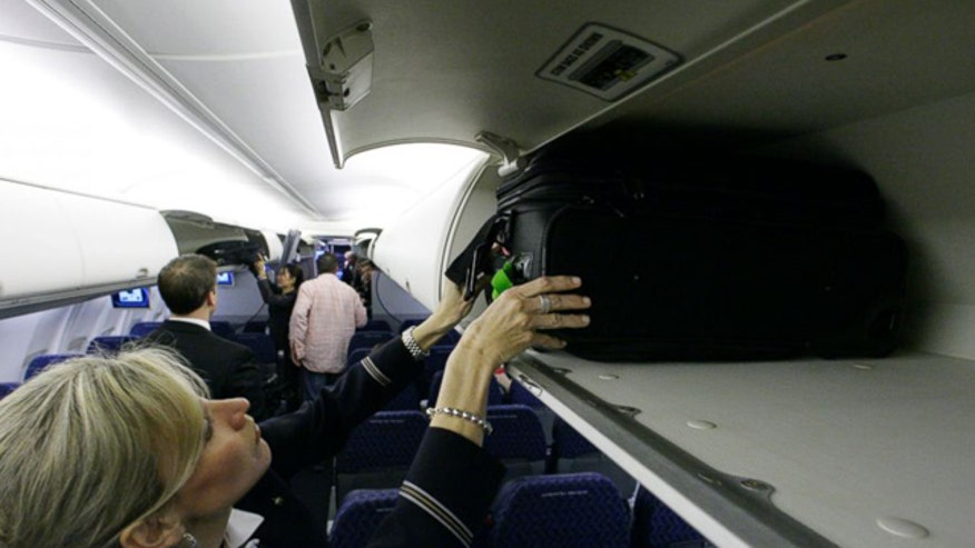 Airline industry wants standard size for carry-on bags