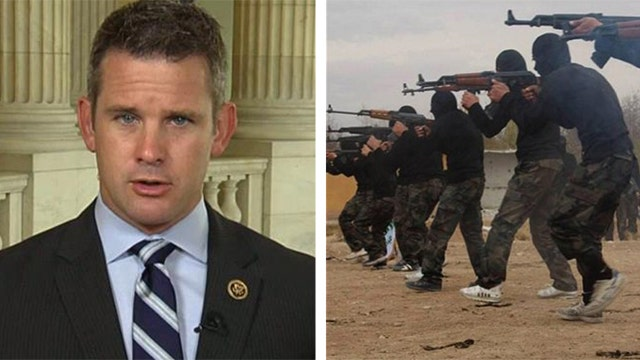 Kinzinger: Special Forces raids needed in ISIS fight