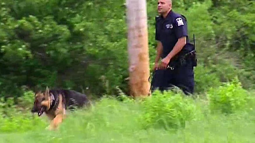 'Possible' scent may have K-9 investigators hot on the trail of killer prisoners. Where can dogs pick up the trail and what clues could police find?