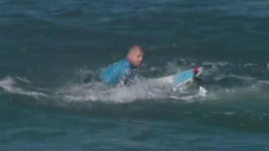 The shark fled after surfer Mick Fanning punched it in the back