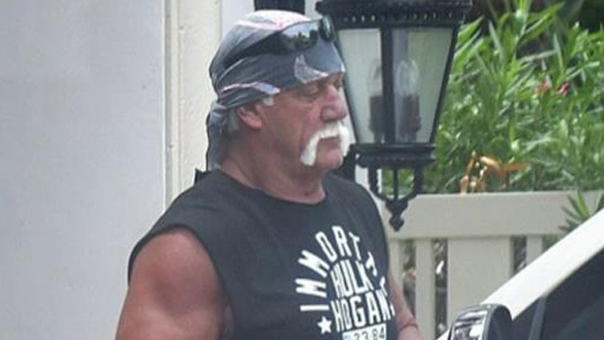 Hogan was terminated from WWE following racist rant