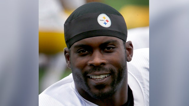 Steelers fans protest Vick on National Dog Day