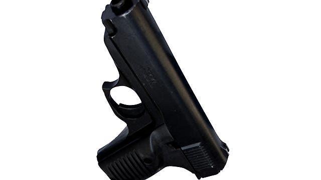 Shooting of TV crew fuels new debate over gun control