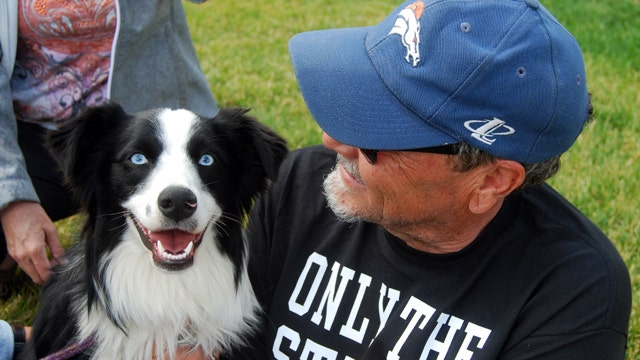 Dog reunited with owners after 42 days lost in Yellowstone