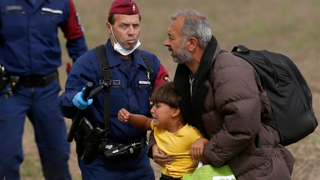 Political Insiders Part 2: Europe's migrant crisis