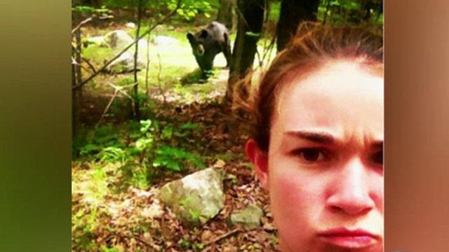 Colorado park closed over bear selfies